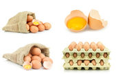 Eggs on a white background — Stock Photo