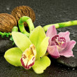 Zen Stones and Orchid Flower — Stock Photo