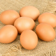 Close up view of eggs — Stock Photo