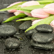 Black zen stone with  tulips — Stock Photo