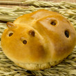 Bread in the shape of a ladybug — Stock Photo #27628521