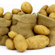 Three  Sacks of Potatoes. — Stock Photo