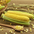 Corn on the wooden table — Stok fotoğraf