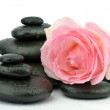 Stock Photo: Rose flower with basalt stones