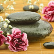 Pink flowers with sea stone in the massage parlor — Stock Photo