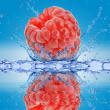 Raspberry falls deeply under water with a big splash. — Stock Photo