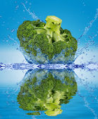 Green broccoli falling in water — Stock Photo