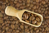 Coffee beans in spoon — Stock Photo