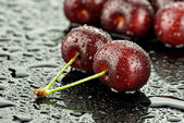 Cherry med droppar — Stockfoto