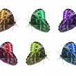 Butterfly isolated collage — Stock Photo #32993135
