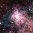 Tarantula Nebula — Stock Photo