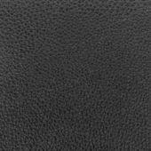 En cuir noir — Photo