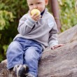 Stock Photo: Little boy on log