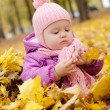 Baby in autumn forest — Stockfoto