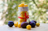 Yellow and purple plums — Stock Photo