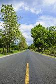 Long road — Stock Photo