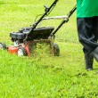 Stock Photo: Worker mowing grass