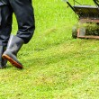 Worker mowing grass — Stockfoto #31030761