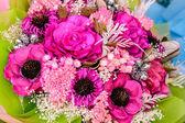Beautiful dry flowers — Stock Photo