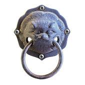 Lion head knocker  — Stockfoto