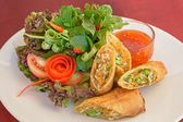 Fried spring rolls food — Stok fotoğraf
