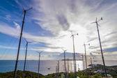 Wind farm. — Stock Photo