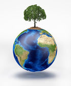 Planet earth with a tree on top. — Stock Photo