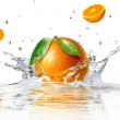 Stock Photo: Orange splashing into clear water