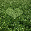 Grass meadow, bird eye view, with a heart shape cut grass in the — Stock Photo