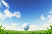 Green Golf court with close up on grass and ball on tee. — Stock Photo