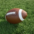 Stock Photo: Americfootball ball, on grass. Close up.