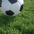 Soccer ball close up on grass lawn. — Stock Photo
