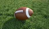 American football ball, on the grass. Close up. — Stock Photo