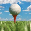 Stock Photo: Golf ball isolated on tee in grass.
