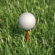 Golf ball isolated on tee in the grass. — Stock Photo