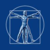 Image inspired on Leonardo da Vinci's Vitruvian man — Stock Photo