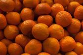 Many close up oranges — Stock Photo