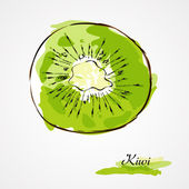 Kiwi fruit slice — Stock Vector