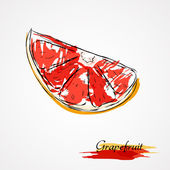 Grapefrukt — Stockvektor