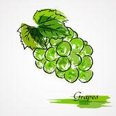 Frutas uvas — Vetorial Stock