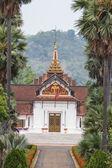 Tree view louangprabang national museum — Stock Photo