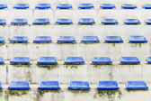 Old grandstand arena with blue chair — Stock Photo
