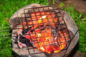 Burning wood in stove and top grille — Foto de Stock