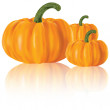 Three realistic pumpkins - Stock Vector