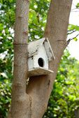 Birdhouse in the autumn forest — Stock Photo