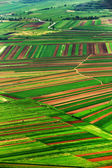 Aerial abstract view of a country agricultural landscape — Stock Photo