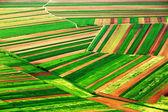 Abstracte luchtfoto van het agrarische landschap van een land — Stockfoto