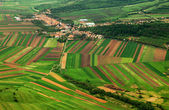 Aerial agricultural landscape — Stock Photo