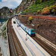 Manarola railway station, Cinque Terre, Italy — Stock Photo