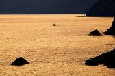 Günbatımı ışığı cinque terre, i̇talya — Stok fotoğraf